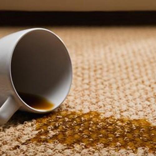 Odkurzacz piorący: dla firmy i do domowego użytku